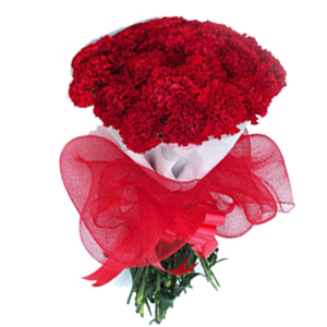 carnations-bunch-red-flowers-Indore