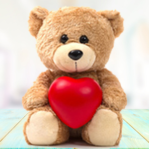 brown-teddy-with-pillow-soft-toys-Indore