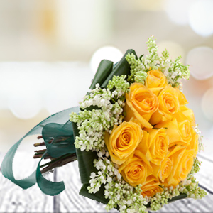 yellow-roses--flowers-Indore