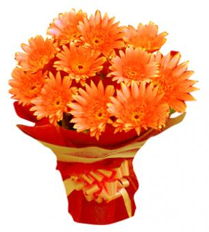 Bunch Of Orange Gerbera: Gift Indore Cantt,  Indore
