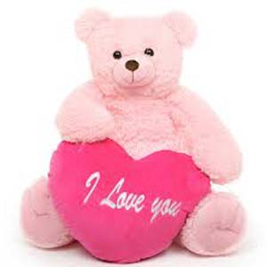 Valentine Teddy Soft Toys Cloth Market, Indore
