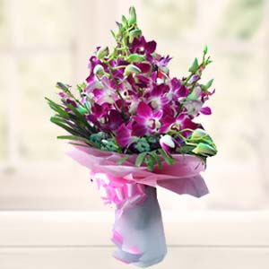 Purple Orchids: Gift B K Colony,  Indore
