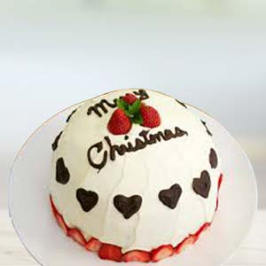 A Special Xmas Cake: Christmas  Malwa Mill,  Indore