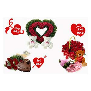 Valentine Perfect Combo: Gift Industrial Area,  Indore