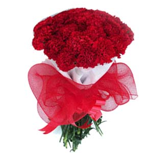 Carnations Bunch Red: Christmas Govt-college, Indore
