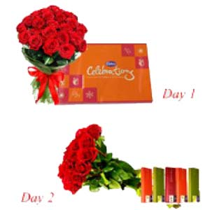 Roses Serenade With Chocolates: Hug Day Indore Cantt,  Indore