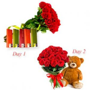 Roses And Teddy Serenade : Gift Barwali Chowk,  Indore