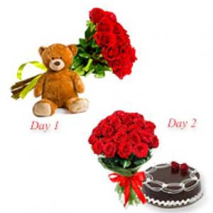 Two Roses Bunch Serenade: Teddy day Indore-cantt, Indore