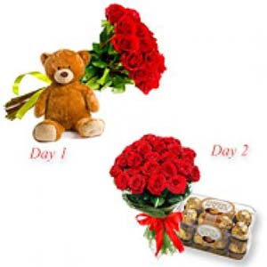 Red Roses Serenade Combo: Gift New Palasia,  Indore