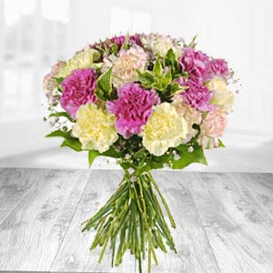 Mixed Carnation  Bunch: Gift Rambagh,  Indore