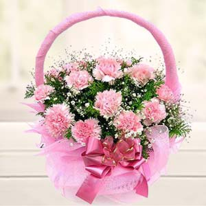 Carnations Basket: Flowers Cgo-complex, Indore