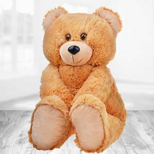 Teddy Bear 2 Feet: Gifts Agrawal Nagar,  Indore