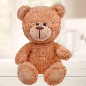 1 Feet Brown Teddy Bear: Gifts Vallabhnagar,  Indore