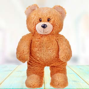 3 Feet Teddy Bear: Gifts Bijasan Road,  Indore