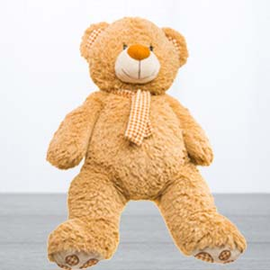5 feet Standing Teddy Bear: Kiss day Manorama-ganj, Indore