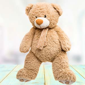 Big Teddy Bear (5 feet) Soft Toys Cloth Market, Indore