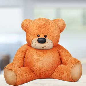 5 Feet Sitting Teddy Bear: Hug day Indore-cantt, Indore
