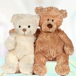 Special Teddy Day Combo: Kiss day Radio-colony, Indore