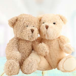 Valentine Combo (Teddy Day): Soft toys Jail-road, Indore