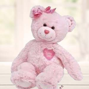 Pink Teddy Soft Toys Red Carnations, Indore