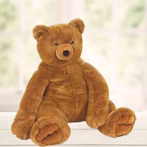 Big Teddy: Soft-toys  Indore