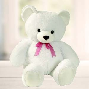 White Teddy: Gifts Malharganj,  Indore