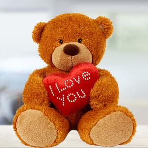 I Love You Teddy Soft Toys Dry Fruit Small Box, Indore