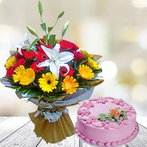 Mix Gerbera With Strawberry Cake: Gifts Malwa Mills,  Indore