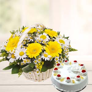Mix Gerbera Basket With Pineapple Cake: Gift Cgo Complex,  Indore
