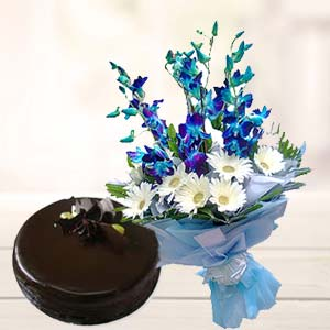 Blue Orchids With Chocolate Cake: Gift Sadar Bazar,  Indore