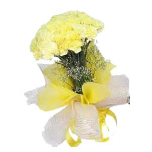 Yellow Carnation: Gift New Palasia,  Indore
