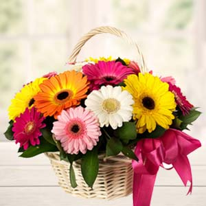 Handle Basket Of Mix Gerbera: Gift Radio Colony,  Indore