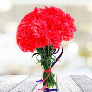 Red Carnations: Gifts Sringar Colony,  Indore