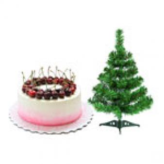 Cherry Cake For Christmas: Christmas Juni Indore,  Indore