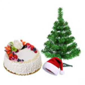 Fresh Fruit Cake For Christmas: Christmas  Rajendra Nagar,  Indore