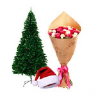 Christmas Tree Gifts Combo: Christmas  Rajendra Nagar,  Indore