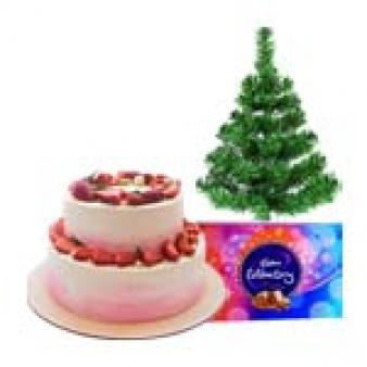 Xmas Chocolate Gifts Combos: Christmas  Rajendra Nagar,  Indore