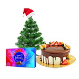 Xmas Best Combos: Christmas  Indore